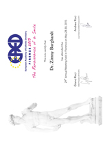 Dr. Burghardt Zimny DGI 2015